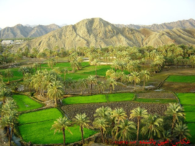 دیدنی-های-سیستان-و-بلوچستان